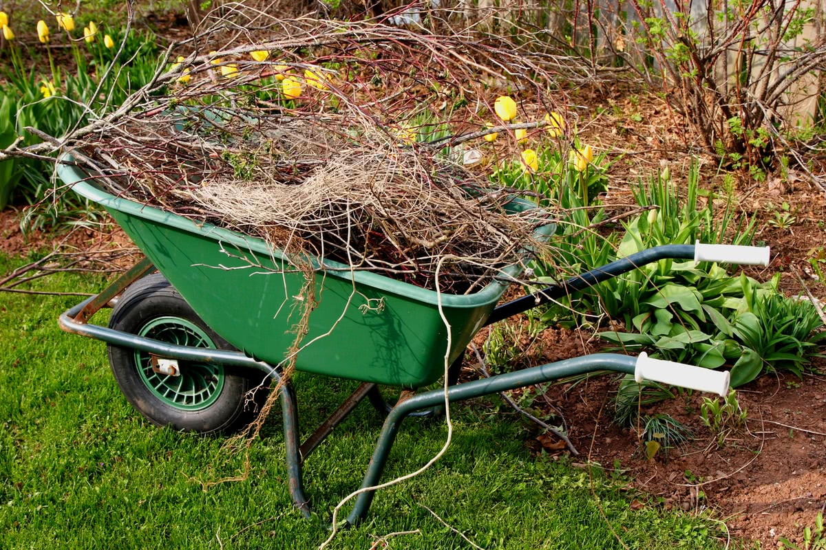 clean up to landscape your home